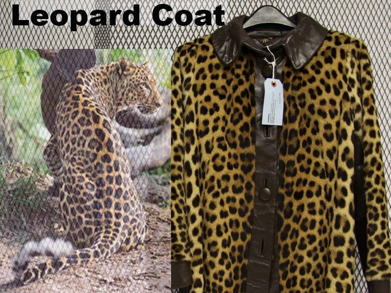 Leopard Coat Illegally For Sale Online
