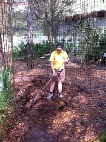 Marci rakes up leaves to prevent flea eggs from hatching
