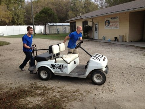 Golf cart fail