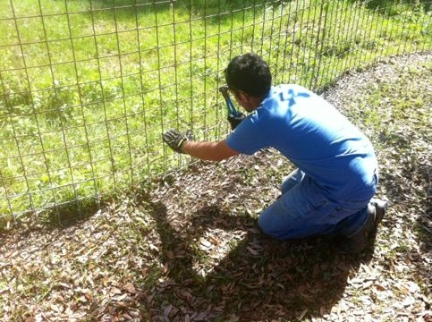 Dr Justin Boorstein working on a cage at Big Cat Rescue