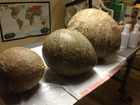 Including what look like dragon eggs for the big cats