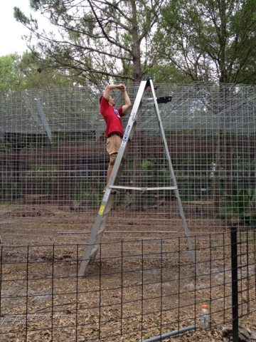 Volunteers help with cage building at Big Cat Rescue