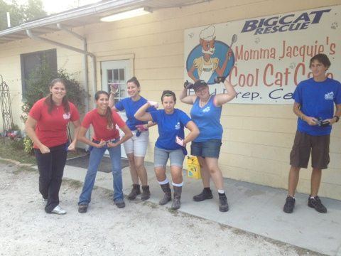 Powerful Volunteers and Interns unload 1000s of pounds of cat food
