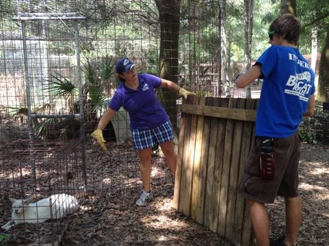 Intern Arnaud assists President Jamie Veronica w/ Tonga White Serval