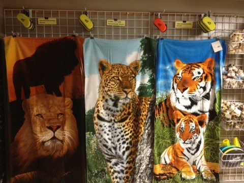 Big Cat Rescue Trading Post Gift Shop20120512-085010.jpg