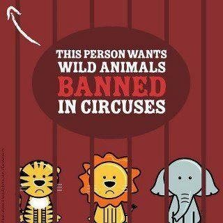 Click to stop the abuse of big cats in circus and traveling acts
