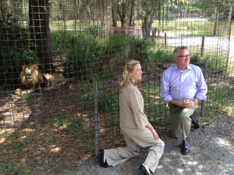 Visitors check out Big Cat Rescue
