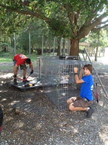 Volunteers and Interns prepare cages for a rescue we are helping