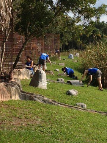 Interns scrub the tiger ponds and spill ways