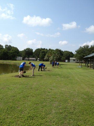 Interns help Skipaholics plant huge trees down by the lake bank