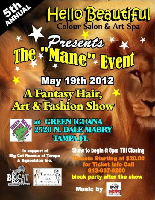 Today at Big Cat Rescue May 18 Join the Mane Event