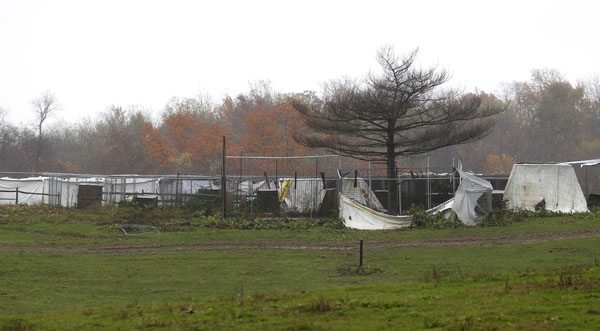 A view of cages from the entrance to Terry Thompson's property, where exotic animals were kept, in Zanesville