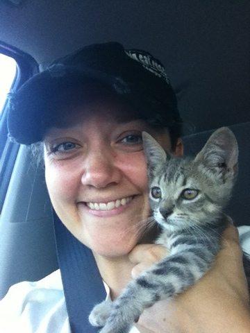 President, Jamie Veronica, holds rescued bobtailed tabby kitten