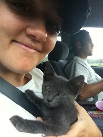 President, Jamie Veronica, comforts rescued kitten on trip to BCR
