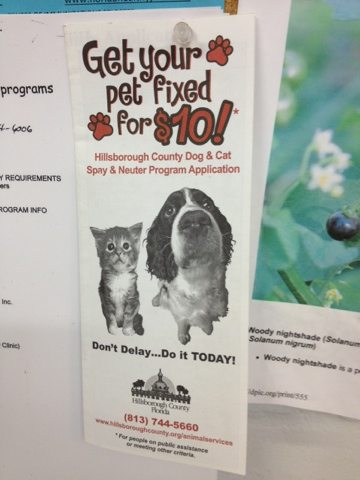 Get your pet fixed for $10.00