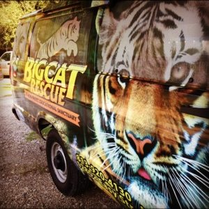 Big Cat Rescue van in action