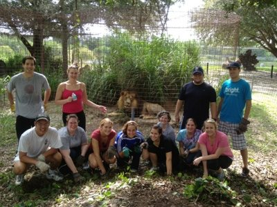 The RNC staff spent a workday at Big Cat Rescue