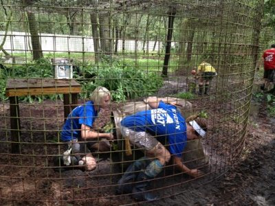 Volunteers make sure the dens are high and dry for the cats