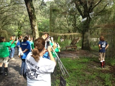 AdvoCats, Interns, Volunteers and Campers watch enrichment