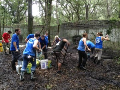 Preparing the rehab area for Gator means a lot of ground prep