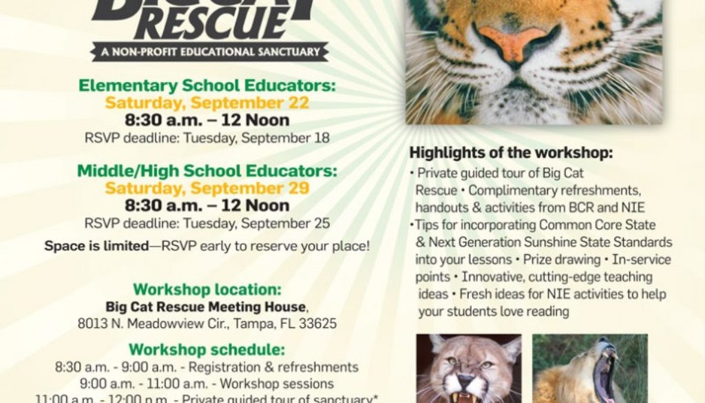 Tampabay Times Newspaper in Education Program