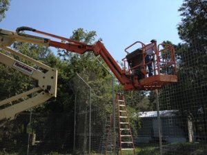 Building a 3,000 sf room addition for a lioness