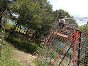 Chris filming Scott Haller working on lion cage