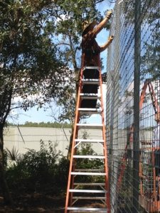Chuck rings cantilever to wall of new cage