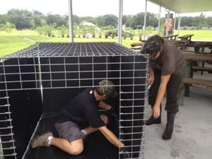 Jamie and Justin modify a transport cage
