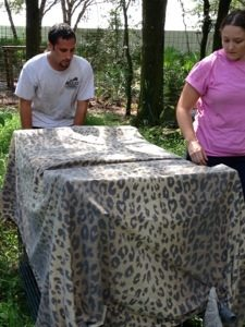 Dr Justin Boorstein catches Jade the leopard