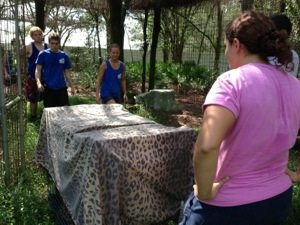 Jamie Veronica instructs interns on how to pick up a leopard without losing any fingers