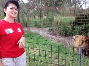Volunteer Laura takes a break from data entry to visit Joseph Lion