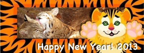 Today at Big Cat Rescue Jan 1 2013 Happy New Year