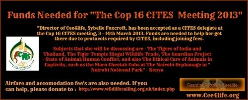 Sybelle Foxcroft  Cop 16 CITES