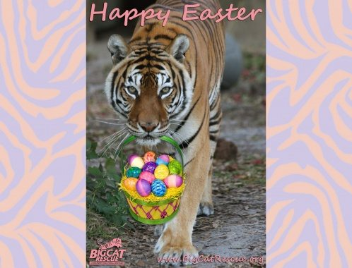 Tiger Easter Egg Basket