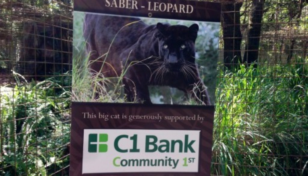 C1-Bank-Sponsors-Big-Cat-Rescue