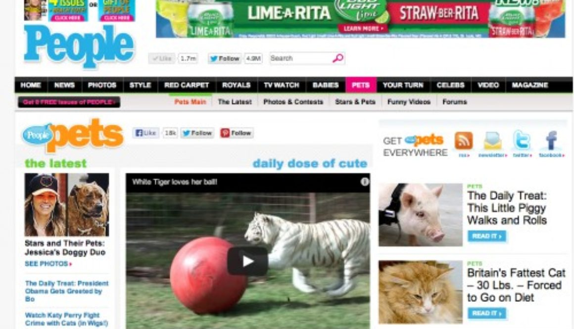 Big Cat Rescue has been featured favorably in the press more than 1,000 times