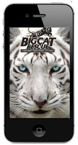 Big-Cat-Rescue-App-2013