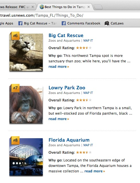 Best things to do in Tampa