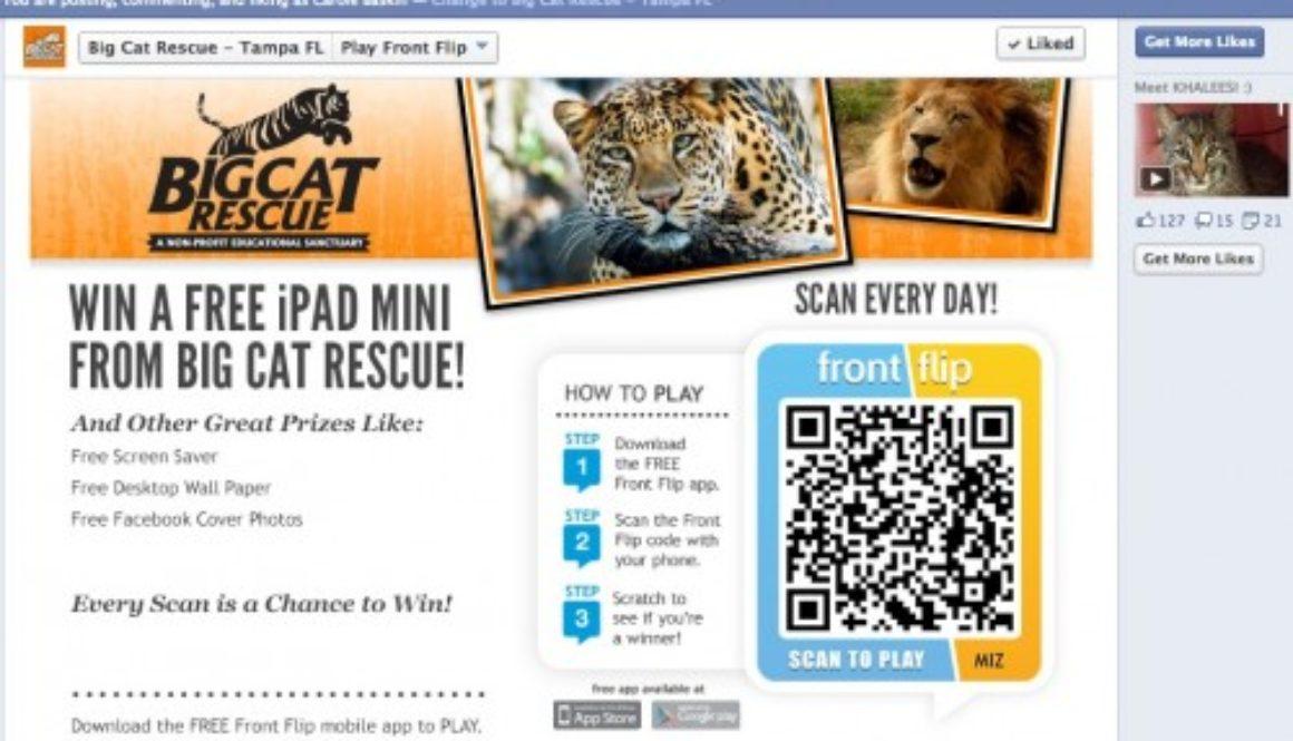 Is Big Cat Rescue A Legitimate Foundation