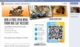 Win an iPad Mini on Facebook.com/BigCatRescue