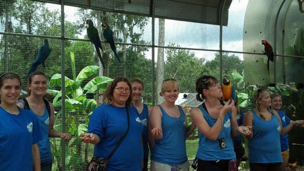 Florida-Exotic-Bird-Sanctuary-7a