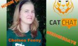 CatChatAnnouncementChelseaFeeny