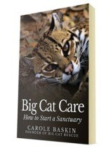 Big Cat Care Book Cover FREE BOOK about taking care of big cats and how to start a sanctuary