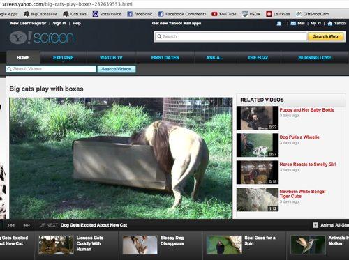 1-BCR-Yahoo-Video-2013-05-05
