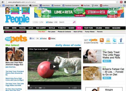 1-PeopleMagazineZabuVideoJune12-2013