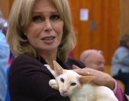 Joanna Lumley and cat