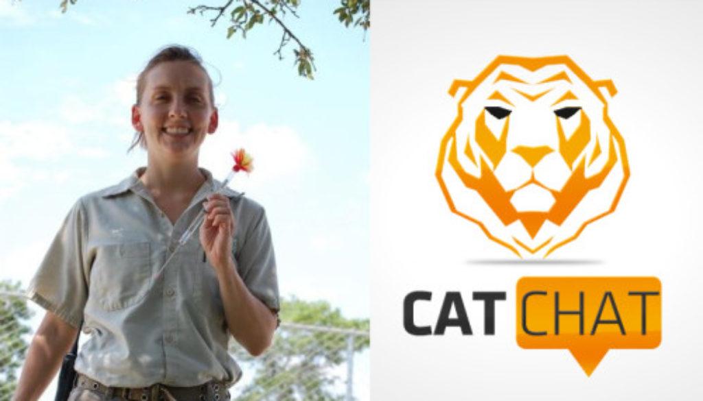 CatChat32