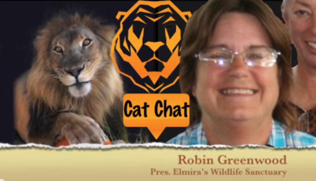 CatChat34RobinGreenwood