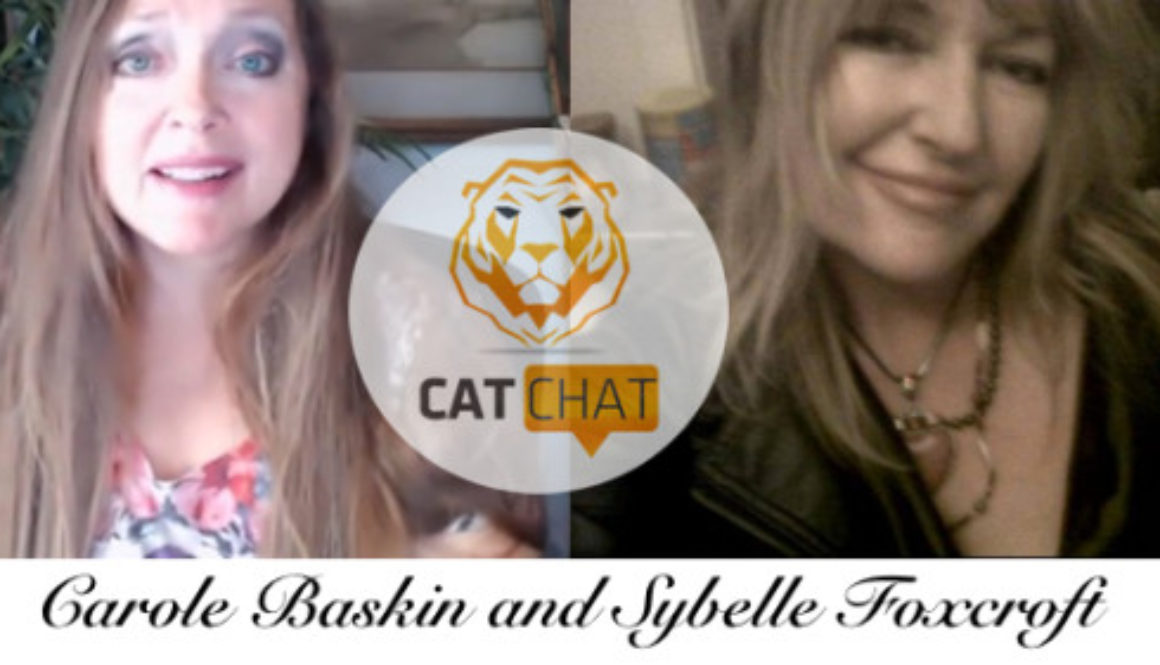 Cat Chat 40 Sybelle Foxcroft